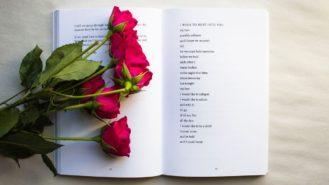 給情人節愛好者、憎惡者、狂熱者與無視者的書單